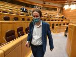 Pablo Iglesias, en el Senado