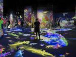 Instalación 'Graffiti Nature: Lost, Immersed and Reborn' de teamLab en CaixaForum Barcelona