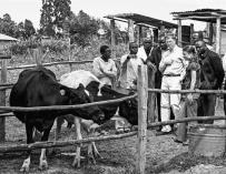 Fotografía cedida por la Fundación Bill y Melinda Gates que muestra al empresario, informático y filántropo estadounidense mientras visita una granja en Kenia
