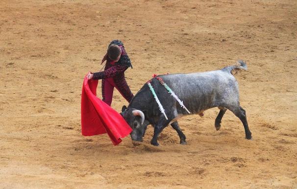 Fundación Toro de Lidia denunciará los tuit ofensivos contra Adrián, un niño enfermo que desea ser torero