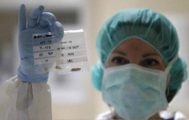 Una investigadora con un archivo de patentes. Foto: EFE