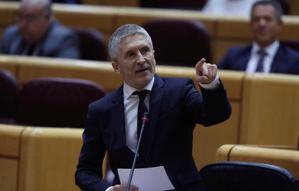 Grande Marlaska, ministro de Interior