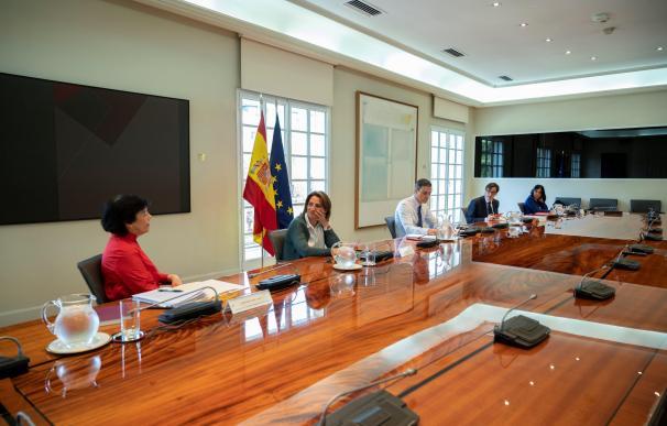 El presidente del Gobierno, Pedro Sánchez, durante una nueva reunión con sus ministros antes de la videoconferencia con las CCAA.