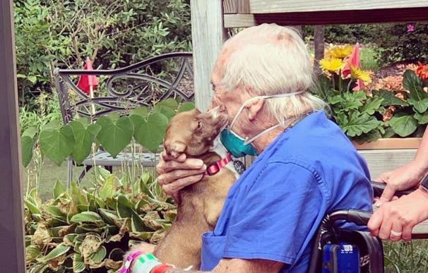 Un anciano de 86 años sobrevive a un derrame cerebral gracias a su mascota