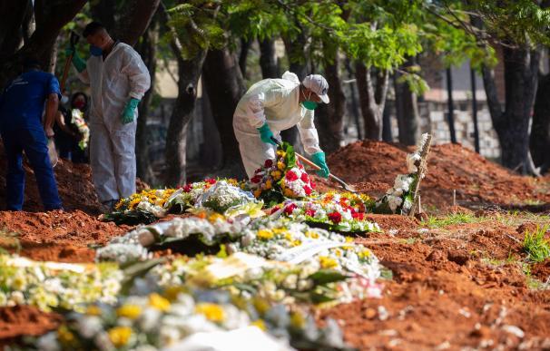 Coronavirus Brasil, mundo, flores, EPI