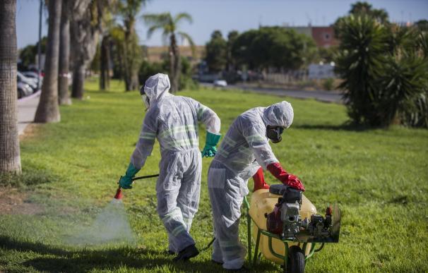 El virus del Nilo alcanza a 12 municipios y baja a 16 el número de hospitalizados
