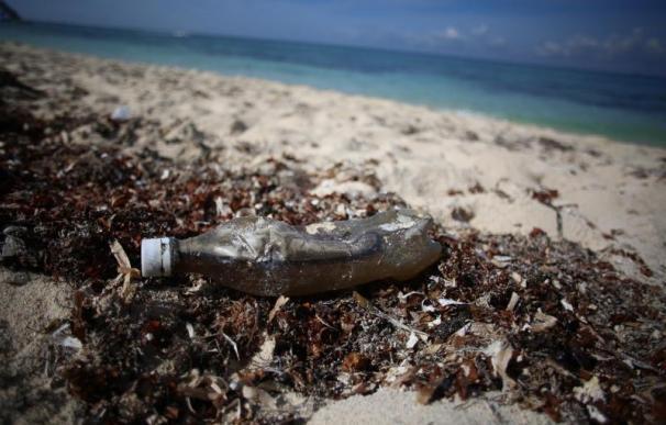 Plástico playa mar medioambiente contaminación