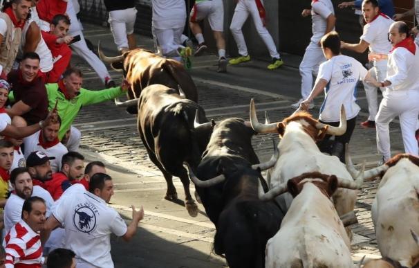 Los toros, el símbolo bullish o alcista en los mercados, han sorprendido al Ibex 35.