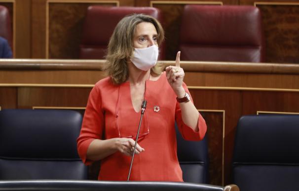 La ministra de Transición Energética, Teresa Ribera, en una sesión del Congreso.