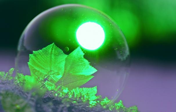 La transición energética se ha convertido en la temática de moda entre los inversores.