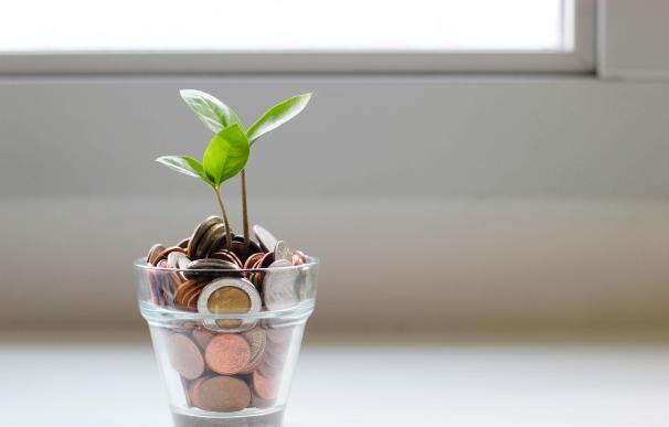 Ahorro Ahorrar Monedas