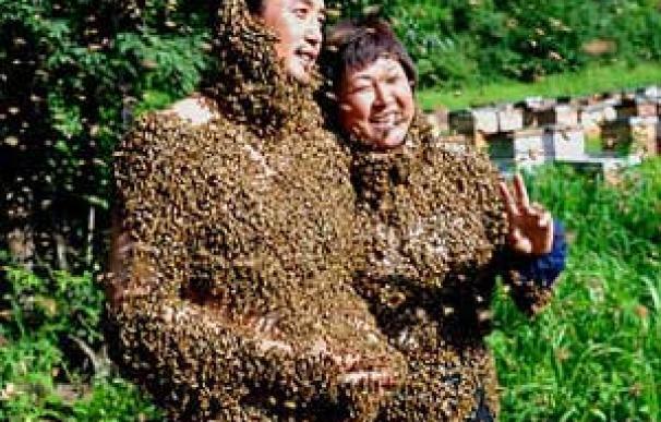 abejas-1