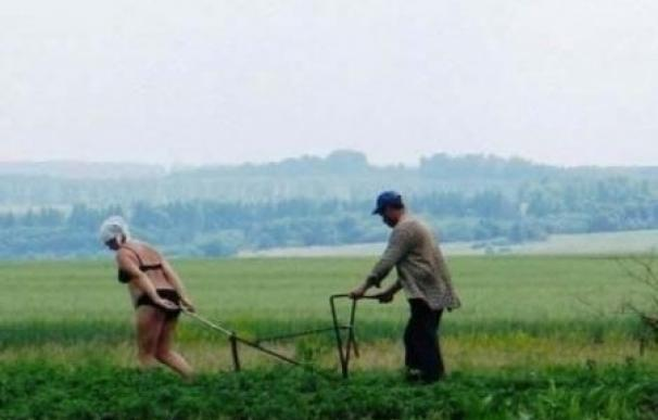 ploughing-russia