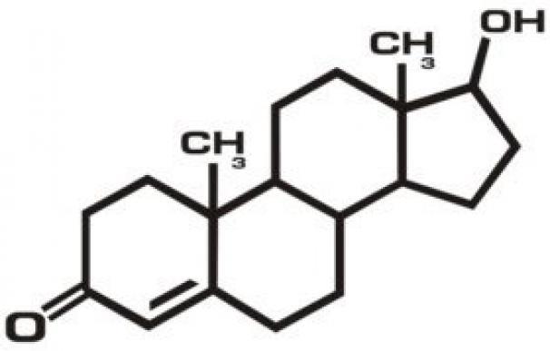 testosterona-copy