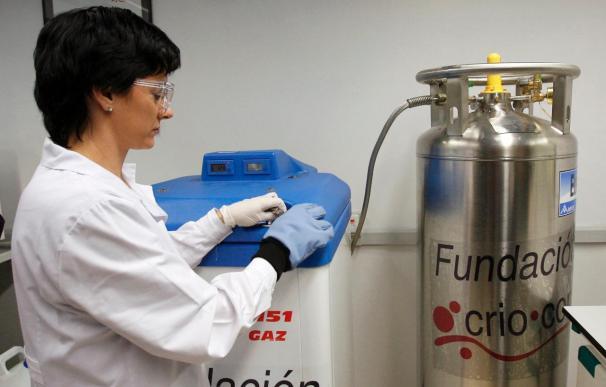 España lidera los trasplantes de sangre de cordón umbilical en Europa