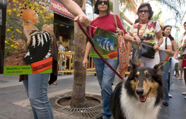 """Una cadena humana protesta contra """"los especuladores que quieren matar el paisaje"""""""