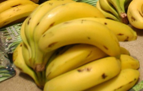 El banano afrontan la crisis económica mejor que otros productos agrícolas