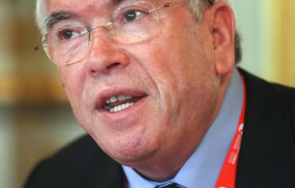 La FEMP dice que el Estatuto de Autonomía Local se aprobará en el primer semestre de 2010