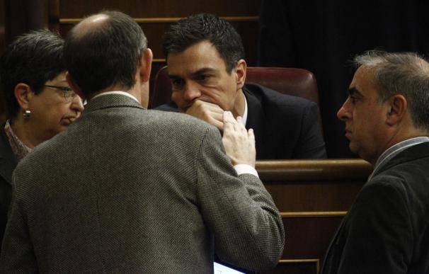 Pedro Sánchez, en una sesión en el Congreso de los Diputados.