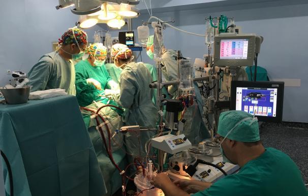 Cirujanos del Hospital Regional de Málaga utilizan nuevas endoprótesis para reparar aneurismas de la aorta