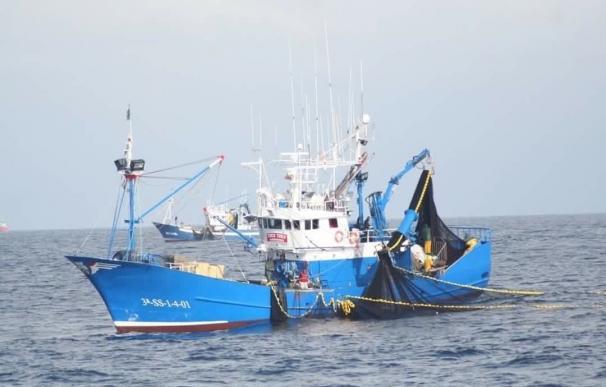 Un total de 59 barcos de Laredo y País Vasco certificados MSC para la pesquería de sardina del Golfo de Vizcaya