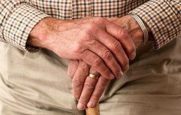 Un compuesto natural puede bloquear la formación de toxinas asociadas con el Parkinson