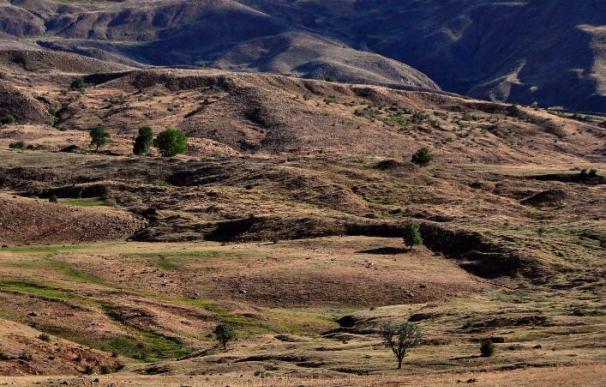 Sistema de guardias paramilitares divide a kurdos sobre solución conflicto