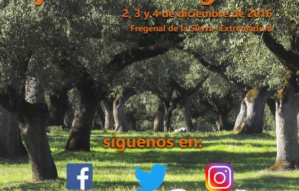 Un 'blogtrip' en Fregenal de la Sierra (Badajoz) el próximo fin de semana promociona el jamón y el folclore