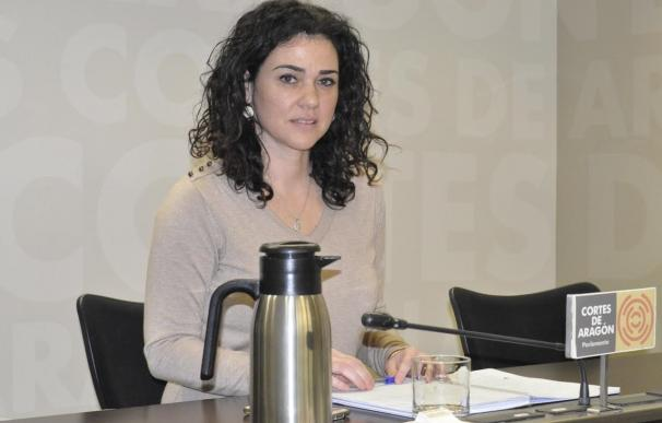 Sanz (Podemos) propone no renovar conciertos educativos para escolares de tres años donde haya plazas públicas