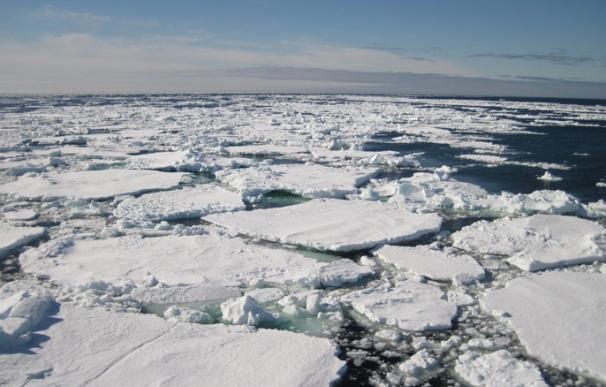 Ecoembes colaborará con Greenpeace y WWF con motivo del Giving Tuesday