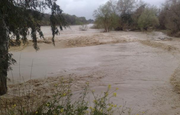 El PSOE reclama que los técnicos de la CHG y de la GMU fijen la cota de inundabilidad del Guadalquivir