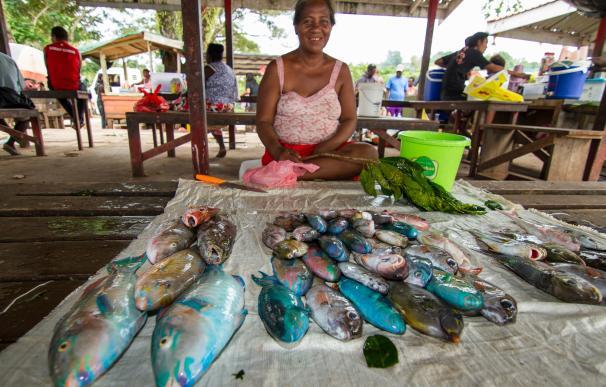 Un estudio revela que el empoderamiento de la mujer mejora la adaptación al cambio ambiental