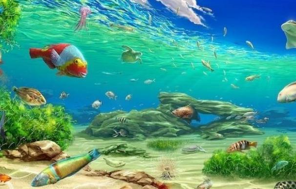 Los océanos más ácidos causaría una pérdida en cascada de la biodiversidad marina
