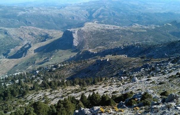 El Senado aprueba una moción para tramitar la declaración de la Sierra de las Nieves como Parque Nacional