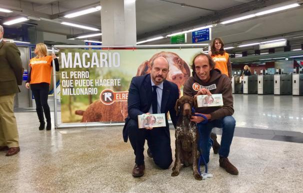 Una media de 370 perros acceden cada día al Metro de Madrid
