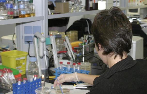 Descubren un gen que aumenta la eficacia de los fármacos contra el cáncer
