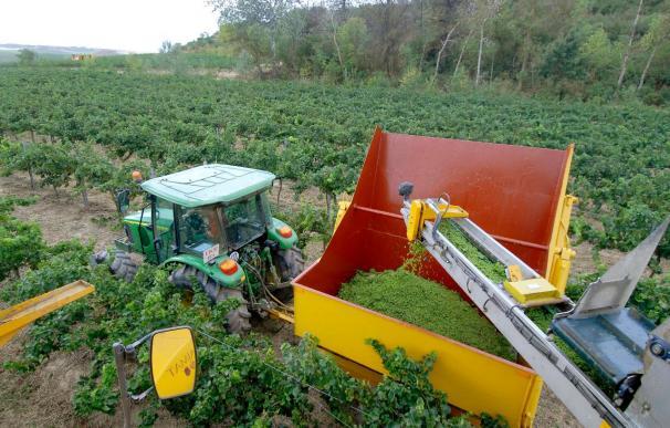 España fue el segundo país receptor de los fondos agrícolas de la UE en 2008