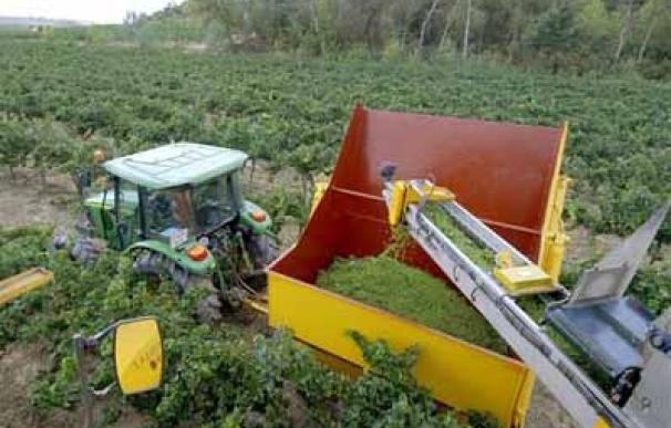 El sector agricola presenta grandes ventajas compertitivas para los inversores, según un informe de Bank of America y Merrill Lynch