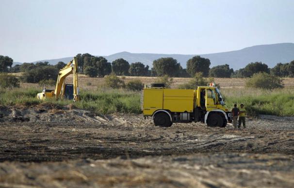 Un nuevo incendio en las Tablas de Daimiel arrasa 40 hectáreas de terreno