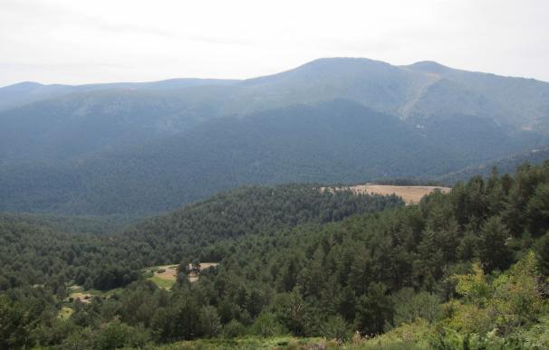 Nace una asociación para promover y potenciar el patrimonio y economía de la Sierra de Guadarrama y su entorno