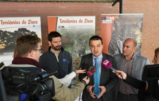 Castilla-La Mancha involucra a los niños en el Proyecto LIFE del lince ibérico para que elijan nombres para las 19 crías