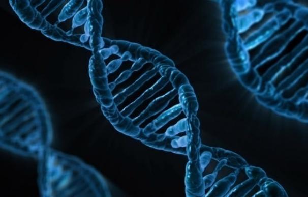 Prueban una inmunoterapia celular contra una mutación habitual del cáncer