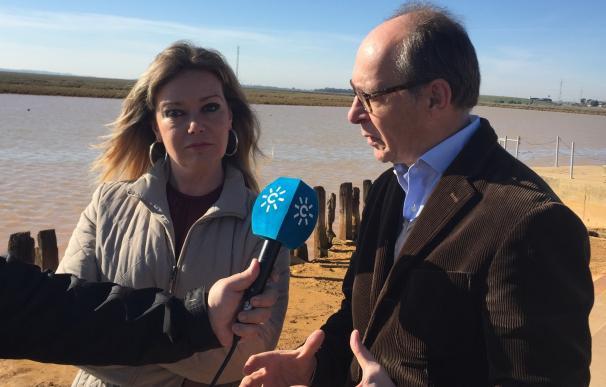 """Díaz Trillo (PSOE) señala que la memoria de San Juan del Puerto se tiene que convertir en """"estímulo de futuro"""""""
