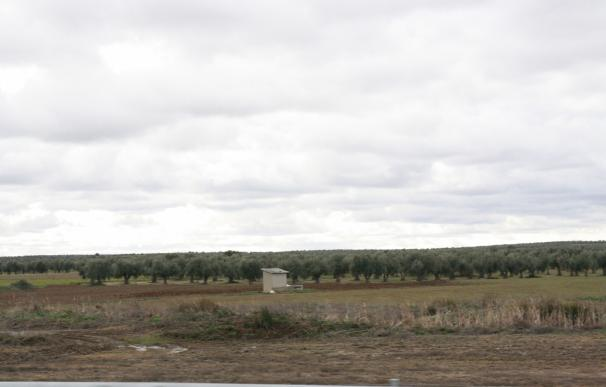 """El PP de C-LM acusa a Page de """"engaño"""" con las ayudas por ZEPA que concede a un grupo de agricultores """"a dedo"""""""