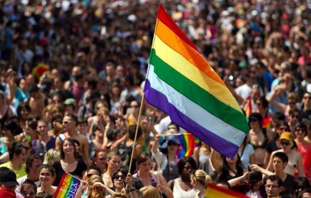 La prohibición del matrimonio homosexual es constitucional en Francia