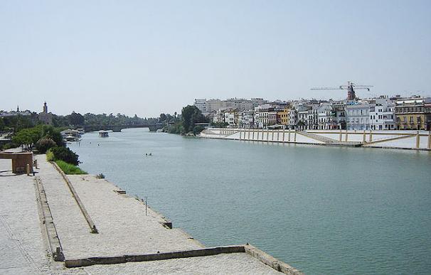 El dragado del río Guadalquivir amenaza Doñana