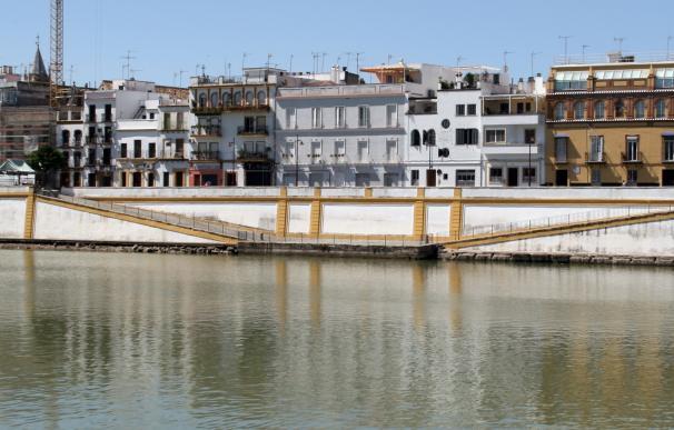 """El pleno aprueba que la comisión de la calle Betis incluya Pureza y """"la condición del aparcamiento"""""""