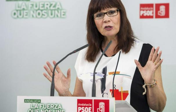 La presidenta del PSOE dice que el Estado debería haber rescatado a las familias y no a los bancos