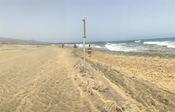Baltar incide en que los técnicos del Gobierno canario garantizan el baño en las playas