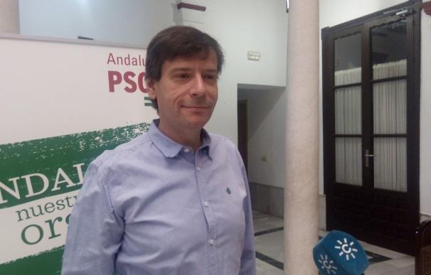 """PSOE-A señala a Arenas como mano ejecutora de la moción en Marbella y teme que se vuelva """"a la época oscura"""""""